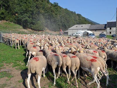 etape du berger : ferme de la famille Abadie
