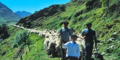 etape du berger : pastoralisme